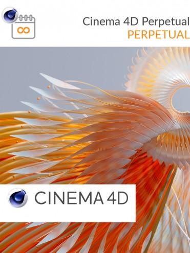 Cinema 4D R25 Einzelplatzlizenz